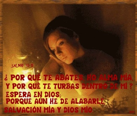 Frases perfectas